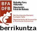 DFB berrikuntza