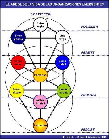 árbol sefirótico administración emergente