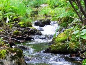 rio de aguas vivas
